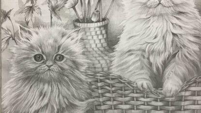 Politie waarschuwt: 'doofstomme' oplichter vraagt geld voor deze fake tekeningen