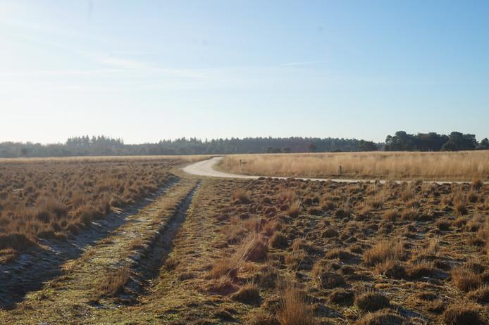 Naast het bestaande pad, moet een schelpenpad komen op de Regte Heide.