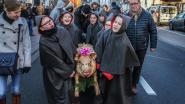 FOTOREEKS. Winterommegang gered: koud genoeg om geslachte varkentjes rond te dragen