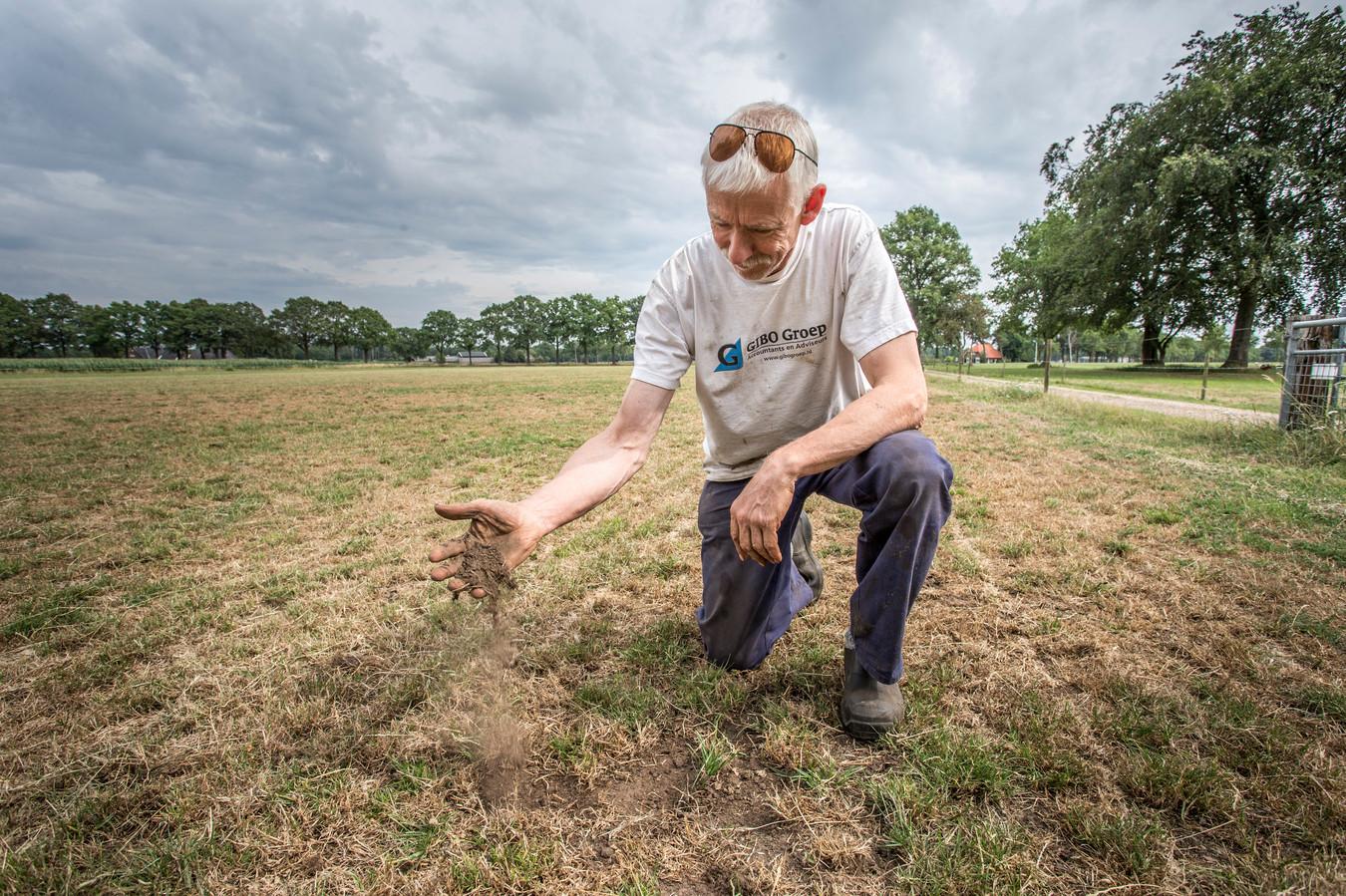 Het land van boer Gerrit Rappard uit Barchem is gortdroog. ,,Dit heb ik in veertig jaar niet meegemaakt.''