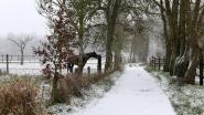 Sneeuw in de Markvallei
