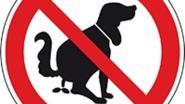 Strenger toezicht op hondenpoep