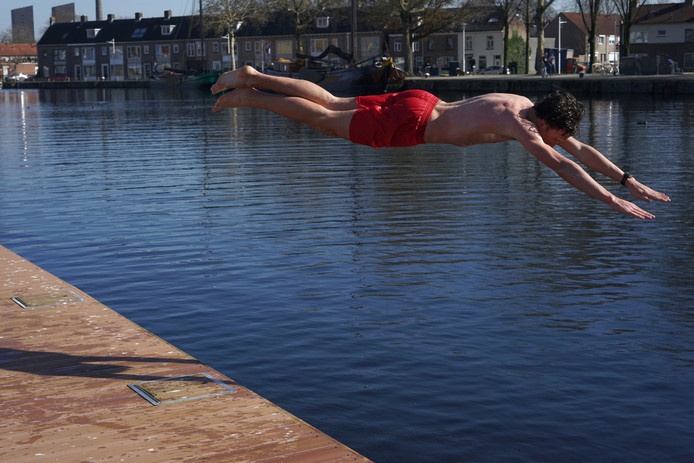 Een vroege zwemmer, begin dit jaar in de Piushaven.