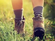 Roparun gaat weer wandelen voor het goede doel in Steenbergen