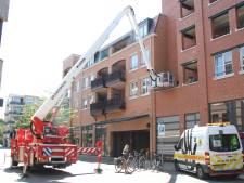 Twee duiven dood door gif op balkon in Nijverdal