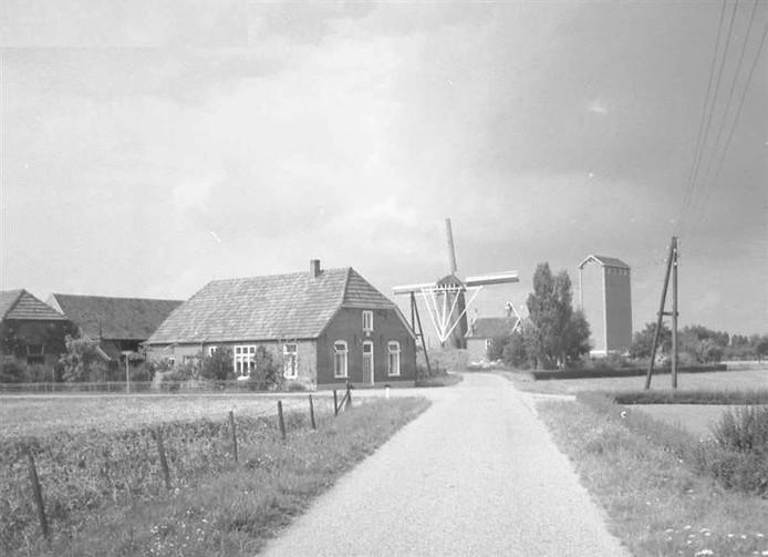 Korenmolen De Rembrandt in Kilder in 1964.