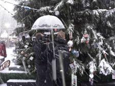 Rosmalens Belang wil duidelijkheid over verdwijnen Joris' kerstboom