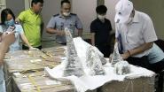 Vietnam onderschept 125 kilo aan hoorns in gips