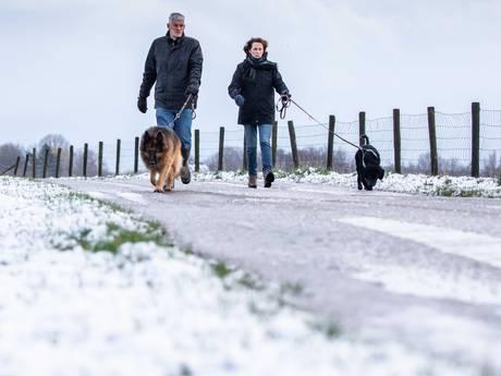 Zuiden en oosten van het land worden wakker met sneeuw, ook morgen kans op witte velden