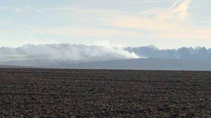 Mysterie opgelost: brandgeur afkomstig van illegaal vuurtje-stook in veld