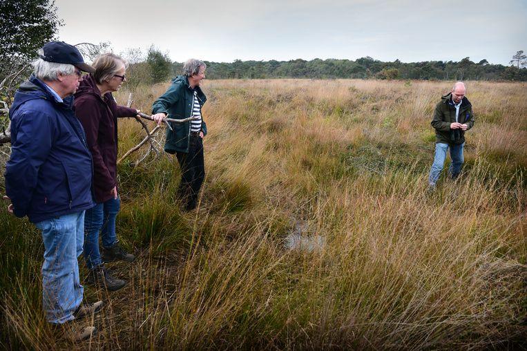 Udo Hassefras van Natuurmonumenten (rechts) geeft wandelaars uitleg over het hoogveen in Natura2000-gebied Wooldse Veen in het Gelderse Winterswijk. Beeld Marcel van den Bergh / de Volkskrant