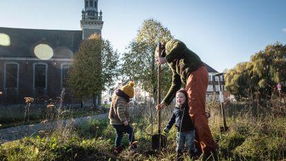 Meulestee geeft niet op: nog 33 boompjes geplant