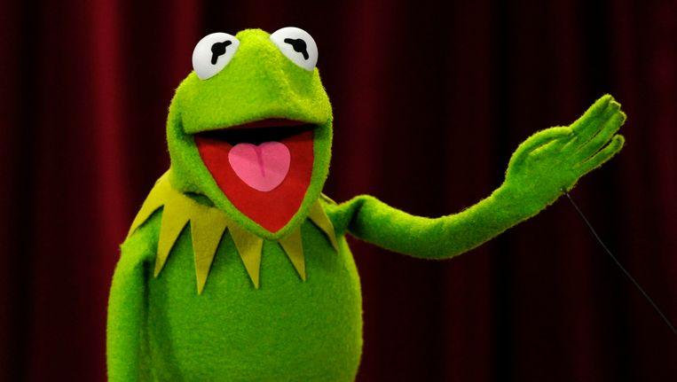kermit de kikker krijgt nieuwe stem tv showbizz hln