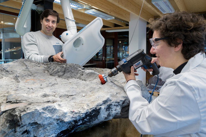 Vrijwilligster Marina maakt een stuk van de versteende boom schoon, op de achtergrond curator Pedro Viegas.
