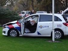 Agenten gewond bij aanrijding in Mariënberg, ravage in tuin