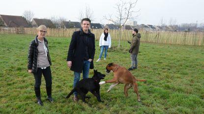 Honden kunnen ravotten op losloopzone van halve hectare