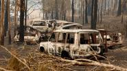 Australische staat roept noodtoestand uit wegens bosbranden