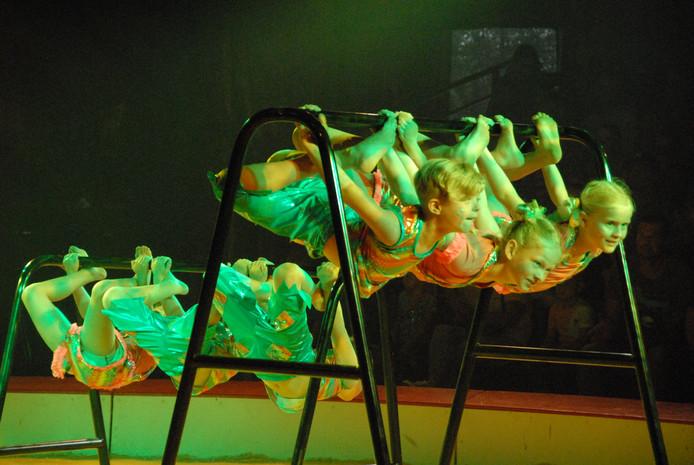 Een aanzienlijk deel van het jeugdige circusgezelschap Il Grigio zorgde zaterdagmiddag tijdens de ouverture van de show Shine voor de nodige opwinding in Haaren