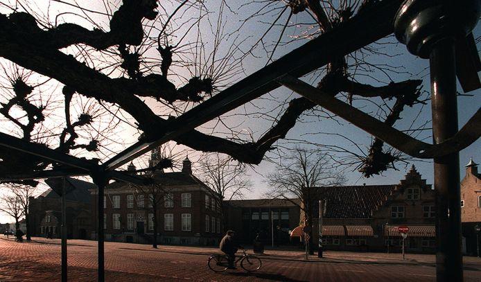 De moeierboom bekijkt ons al eeuwen: van onze oorlogen en verliefdheden tot carnaval en verkeersongevallen. Foto uit 1999.