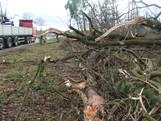 'Half bos' waait om tijdens storm: N18  tussen Eibergen en Groenlo uren dicht