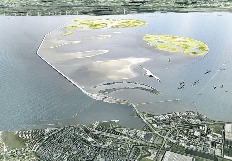 Ontwerp voor een nieuw moeras in het Markermeer bij de dijk tussen Lelystad en Enkhuizen. Beeld