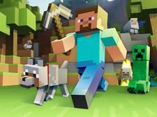 1000 euro om mooiste geluksplek in Minecraft ook in het echt te bouwen