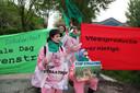 Op 17 april 2009 werd in Erichem actie gevoerd tegen uitbreiding van De knorhof. De actiegroep Stop Straathof legde een groentetuin aan op de locatie waar een nieuwe varkensstal was gepland. Ook werd er actie gevoerd in Oost-Duitsland waar dezelfde eigenaar Straathof ook een mega-varkensstal wil bouwen.