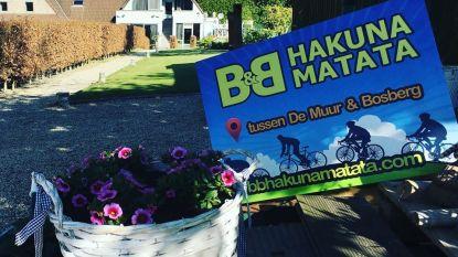 Vlaams geld voor B&B Hakuna Matata en Provinciaal Domein De Gavers
