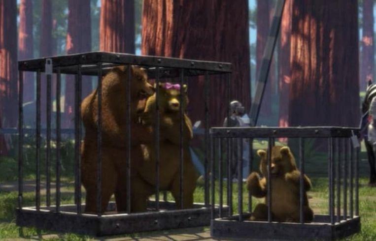 De drie beren werden opgepakt door de koning.