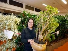 Mai Linh van Plantenasiel Houten: 'Onze bijzonderste plant is een geldboom'