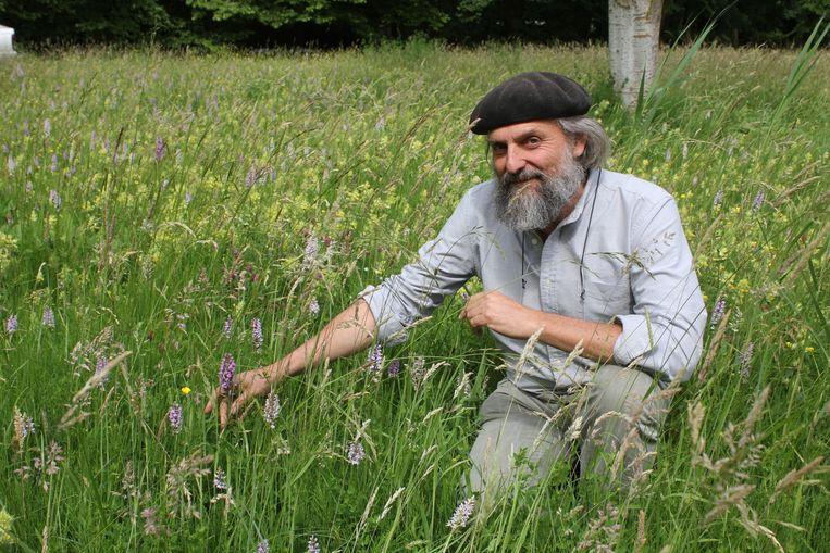 Bart Backaert van de Aalsterse groendienst, in een veld met zeldzame orchideeën in het stadspark.