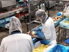 Pizzabakker moet fors snijden: ruim veertig banen weg bij Conveni in Liessel na afhaken Albert Heijn