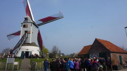 """Oostmolen weer geopend, zelfs Nederlandse bezoeker onder de indruk: """"Nog mooier dan de molens bij ons"""""""