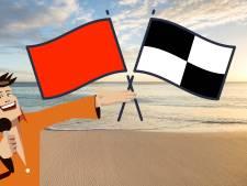 Het is schrikbarend gesteld met onze kennis van strandvlaggen