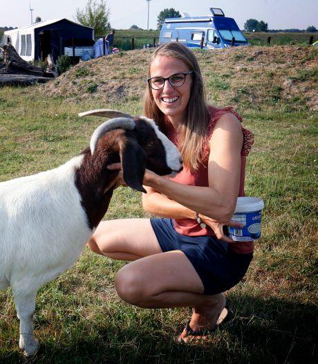Marjo begon een camping in haar eigen achtertuin: 'De boekingen vlogen binnen'