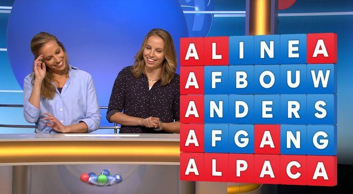 De tweeling raadt het woord alpaca.
