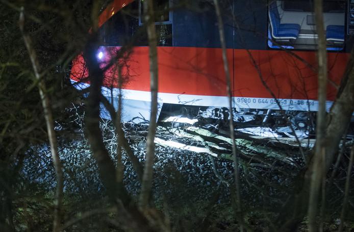 Het gedeelte van de boom waardoor de trein van het spoor raakte.