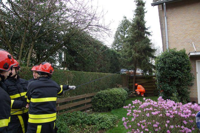 Bij een woning aan de Burgemeester Dekkersstraat in Waspik dreigde een boom op een schuur te vallen.
