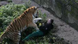 """Verzorgster die tegen tijger voor haar leven vocht, praat voor het eerst: """"Het was mijn eigen schuld"""""""