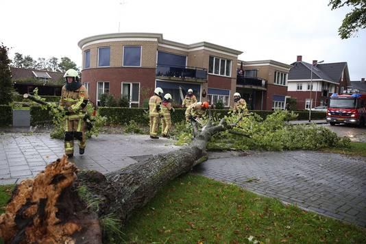 Een omgewaaide boom moest worden opgeruimd