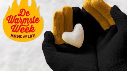 N-VA verkoopt handschoenen voor vzw het Raster