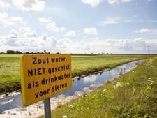 'Grond Westdijk Spakenburg voldoet aan eisen'