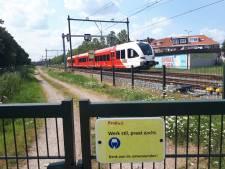 Reizigersorganisatie pleit voor extra lange treinen, spitstreinen of bussen op MerwedeLingelijn