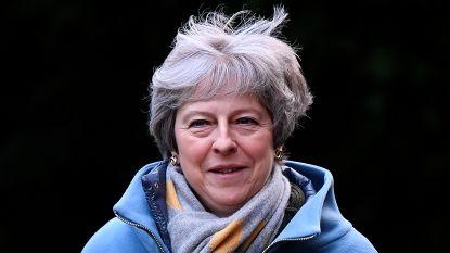 """""""Britse premier May sluit no-dealbrexit uit, maar kan dat nog niet publiekelijk zeggen"""""""