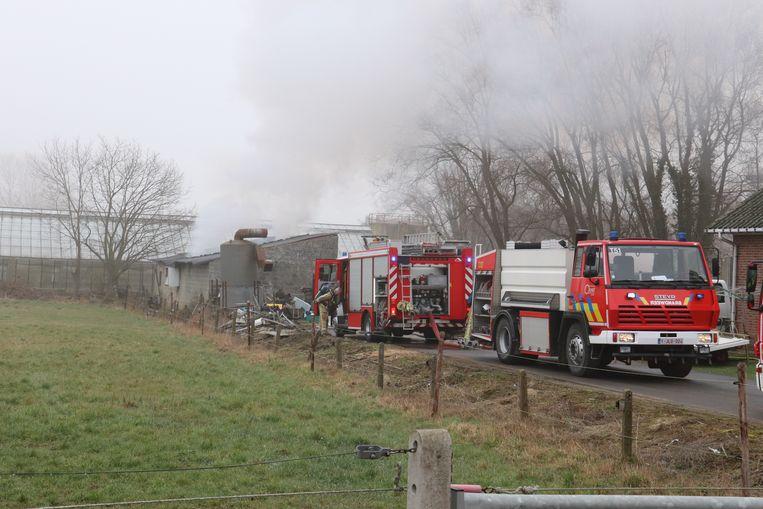 De brandweer had het vuur na een uurtje onder controle. Niemand raakte gewond.