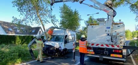 Bestelwagen ramt verlichtingspaal en boom langs Dudzeelse Steenweg