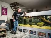 Fred maakt in zijn onderbroek het mega-aquarium schoon, maar kijkt uit voor de giftige roggen