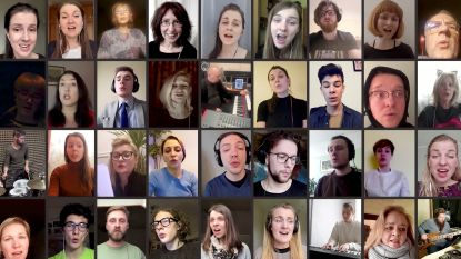 """Universiteit Antwerpen verbiedt Zoom preventief als videochatmiddel: """"Porno kan vanuit het niets opduiken tijdens een online vergadering"""""""