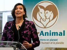 Belgische zusterpartij Partij voor de Dieren van start