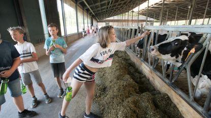 IN BEELD. Leerlingen leren landbouwersstiel